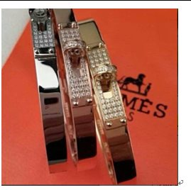 Hermes Earrings H434