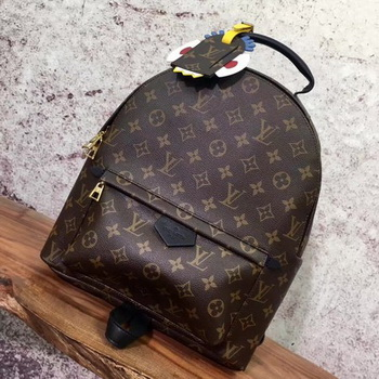 Louis Vuitton Monogram Canvas PALM SPRINGS BACKPACK MM M41561
