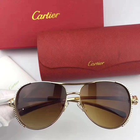 Cartier Sunglasses CTS1502708