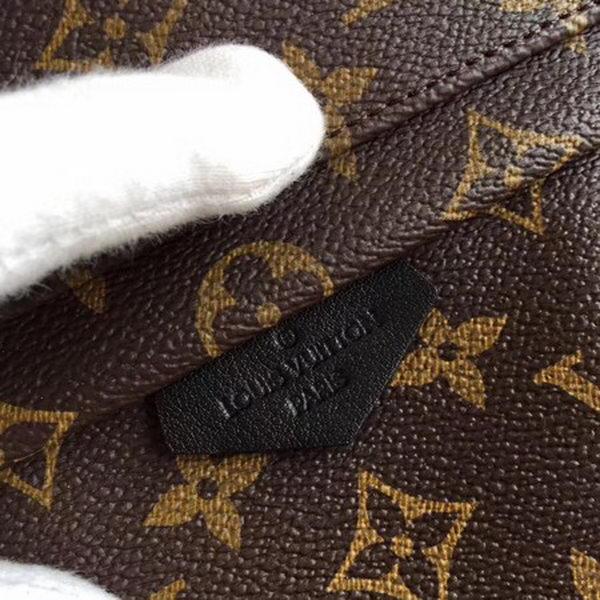 Louis Vuitton Monogram Canvas PALM SPRINGS BACKPACK PM M41560