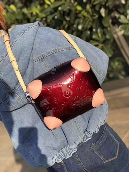 Louis Vuitton 2018 Spring-Summer VENICE M54390 Wine