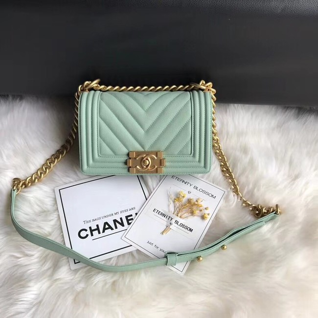Chanel Leboy Original Caviar leather Shoulder Bag A67085 Light green gold chain