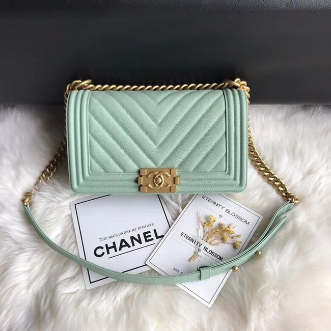 Chanel Leboy Original Caviar leather Shoulder Bag A67086 Light green gold chain