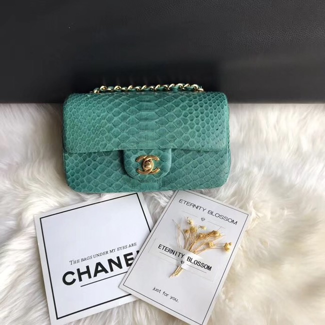 Chanel Mini Flap Bag Python & Gold-Tone Metal A69900 green