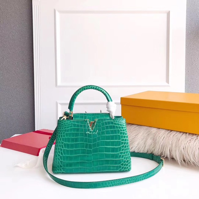 Louis vuitton original crocodile CAPUCINES PM M94587 green