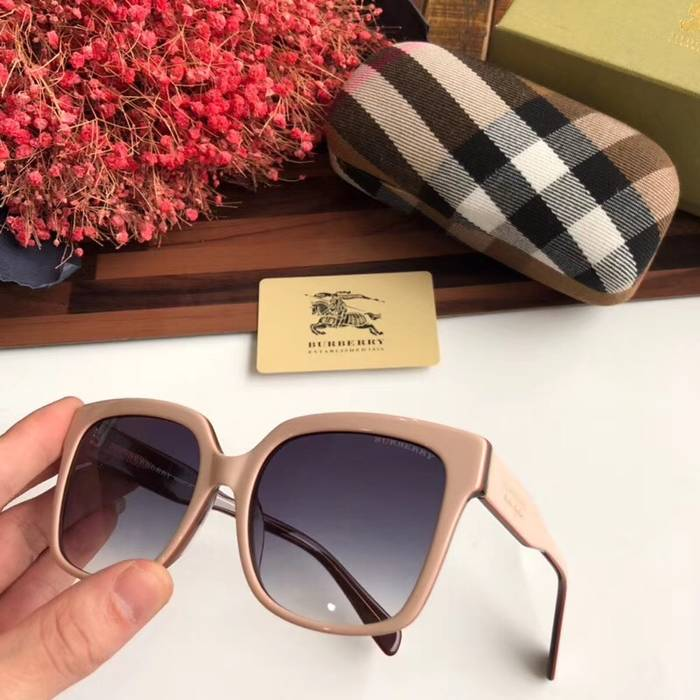 BurBerry Sunglasses Top Quality BB41023