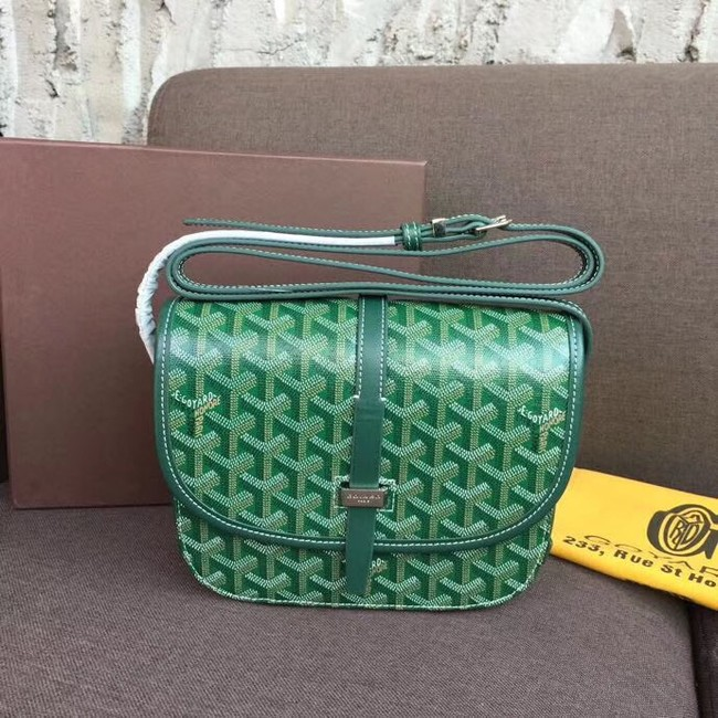 Goyard shoulder bag 36959 green