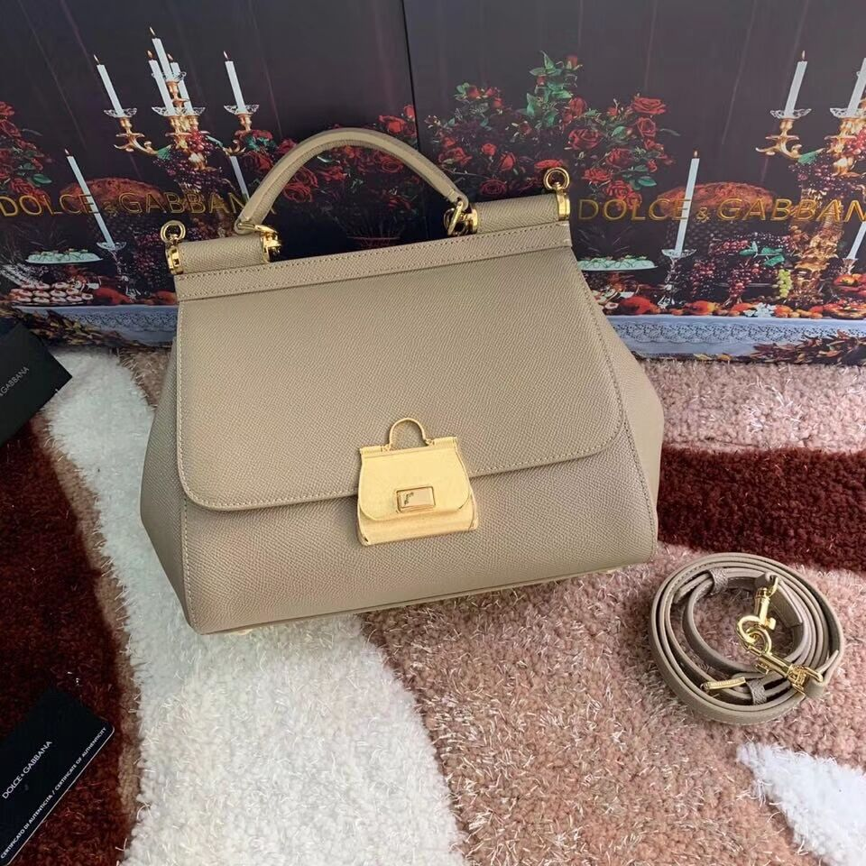 Dolce & Gabbana Origianl Leather Bag 4131 apricot