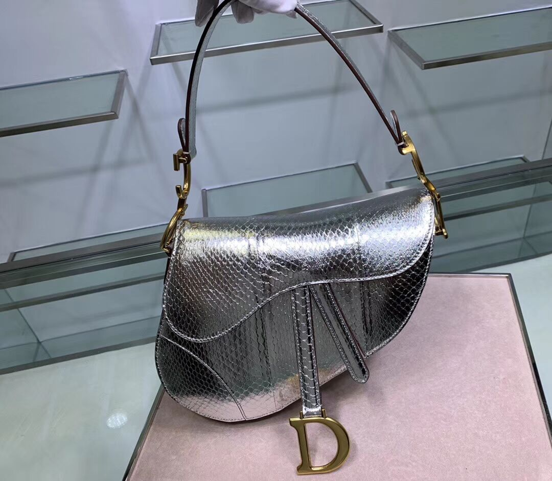 Dior SADDLE Snake skin tote C9046 silver