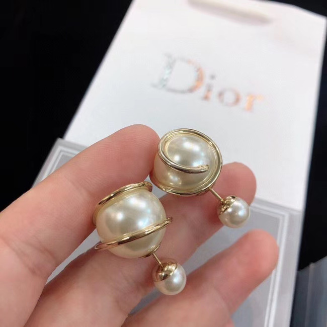 Dior Earrings CE5669