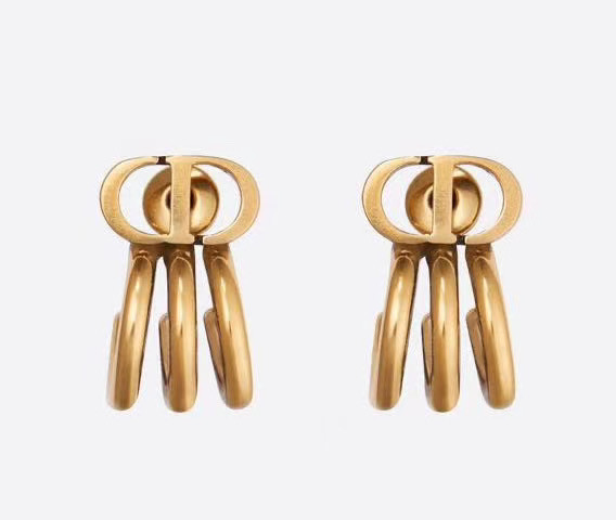 Dior Earrings CE5670
