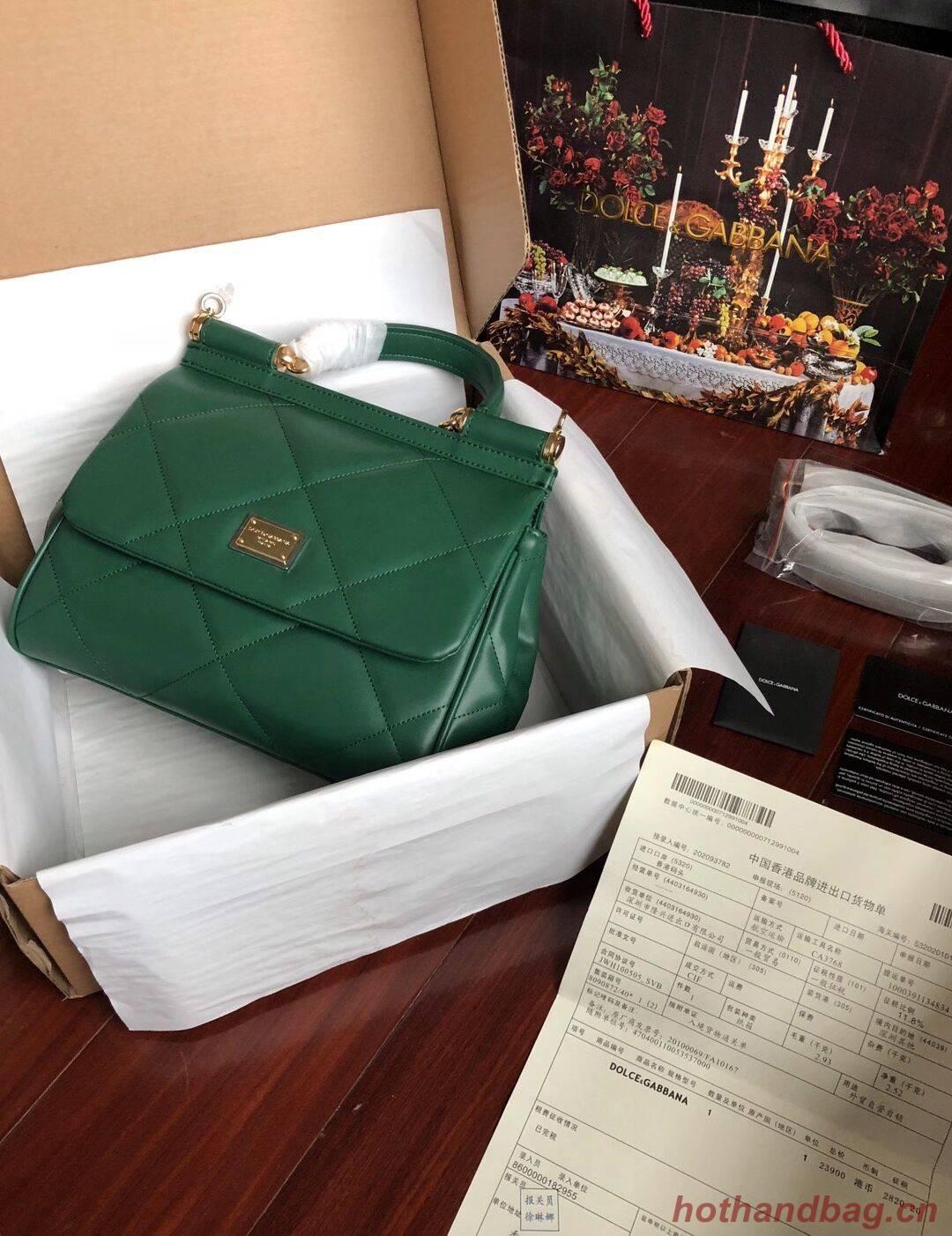 Dolce & Gabbana Origianl Leather 4198 green