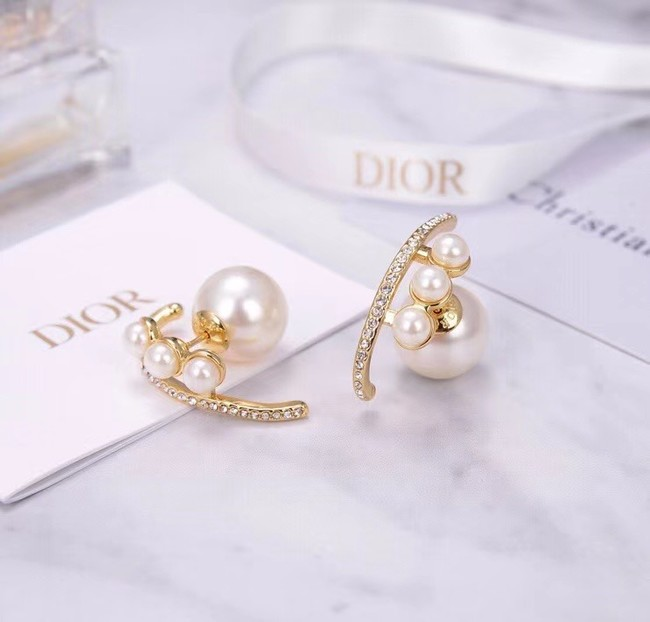 Dior Earrings CE6055