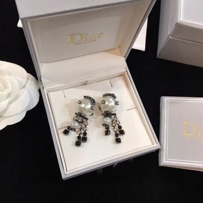 Dior Earrings CE6103