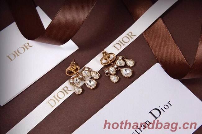 Dior Earrings CE6132