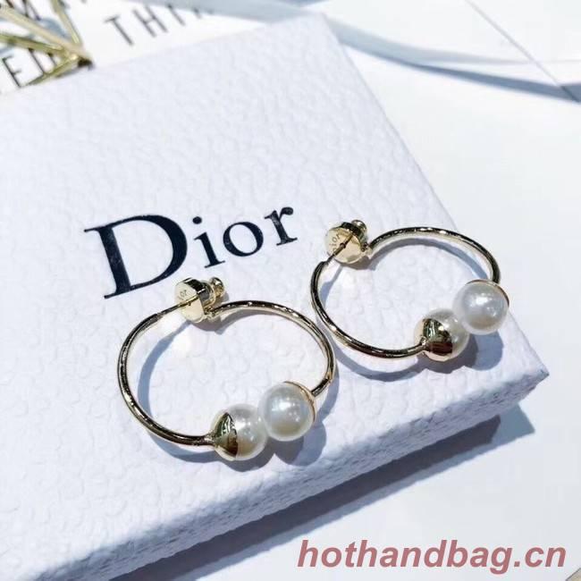 Dior Earrings CE6247
