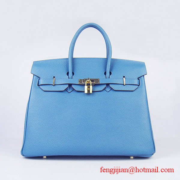 Hermes 35cm Embossed Veins Leather Bag Bule 6089 Gold Hardware